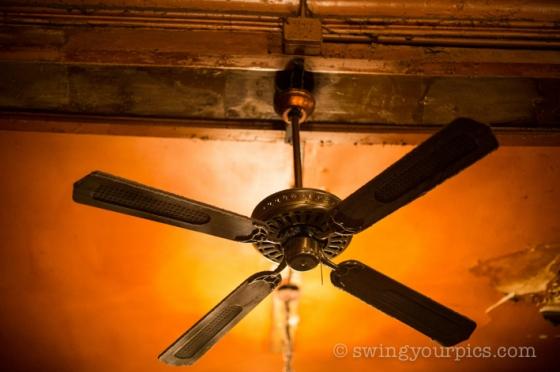swingyourpics 142